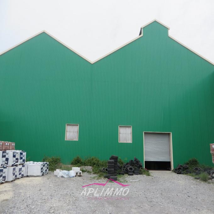Location Immobilier Professionnel Local commercial Le Teil (07400)